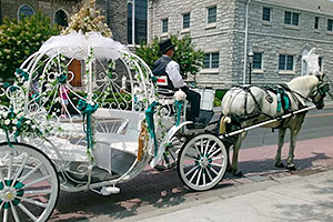 Haunted Cape May carriage rides