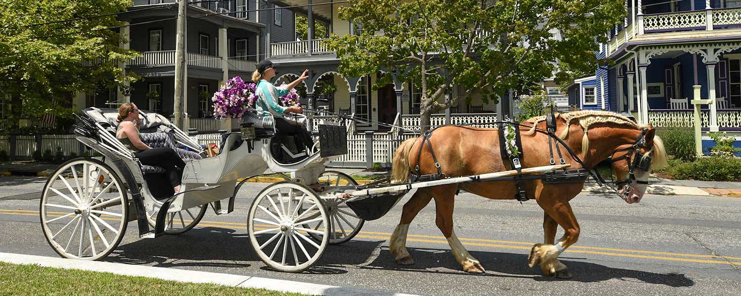 Tours of historic Cape May by Cape May Carriage Company