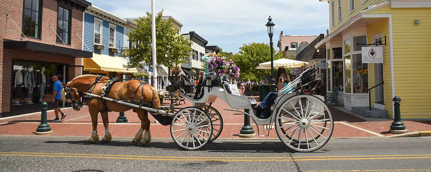 Cape May horse and carriage rides