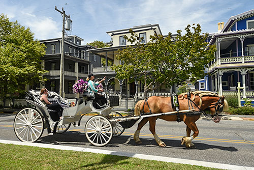 Historic Cape May horse and buggy tours